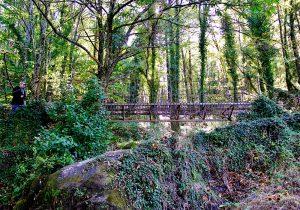 Ruta Cascada El Caozo