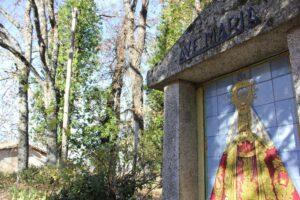 Ruta Cedro Centenario por los Miradores de Béjar