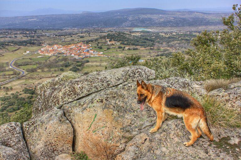 """Ruta Cabeza de Béjar – Santibáñez de Béjar (Ruta «Fiona"""")"""