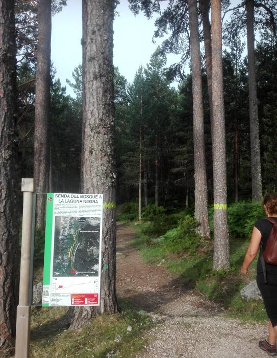 Inicio de la Senda del bosque a la Laguna Negra