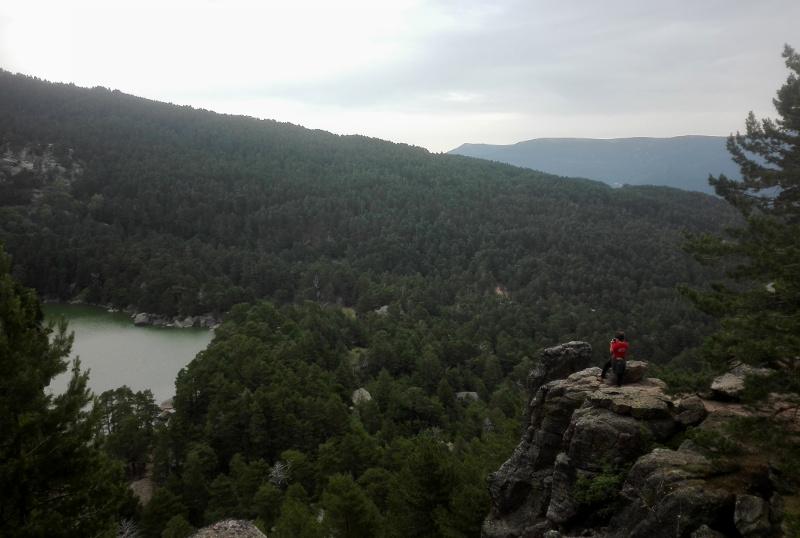 Panorámica de la Laguna Negra y el pinar