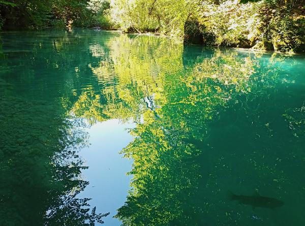Agua azul turquesa del Urederra