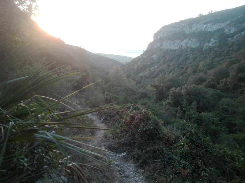 Barranc dels Coloms