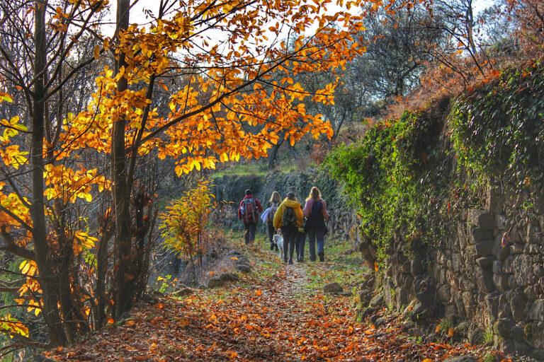 Ruta a la Almenara de Gata (Sierra de Gata)