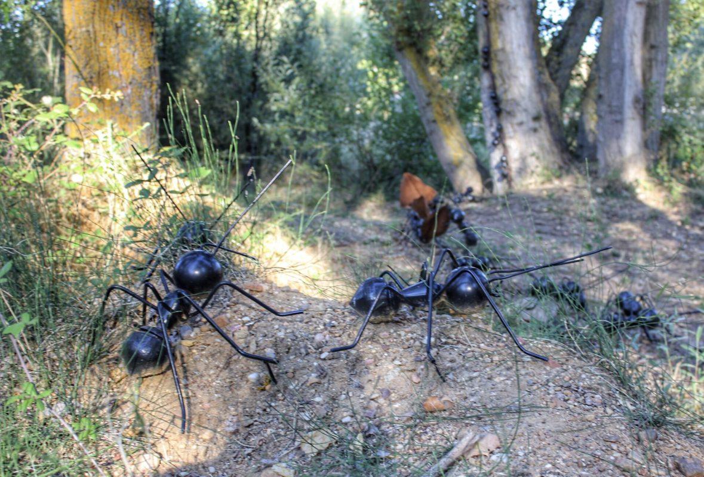 Arte Emboscado en Almenara de Tormes