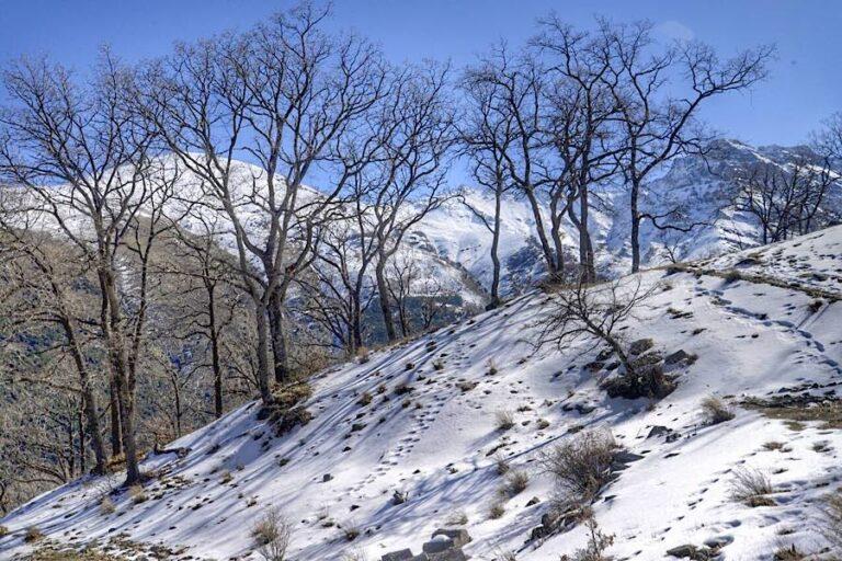 Ruta Cortijo del Hornillo – Minas de la Estrella (Sierra Nevada)