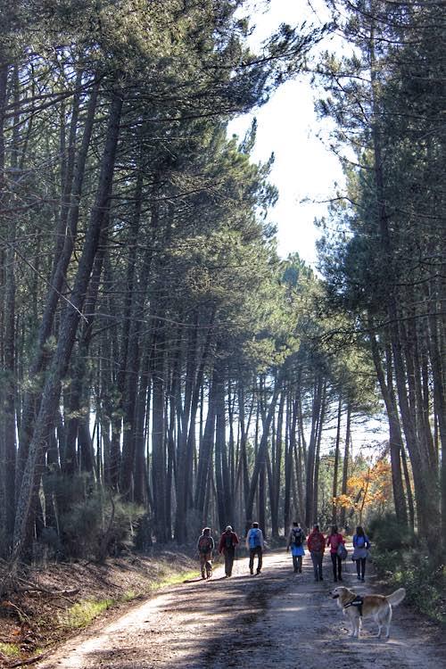 Trekking Salamanca