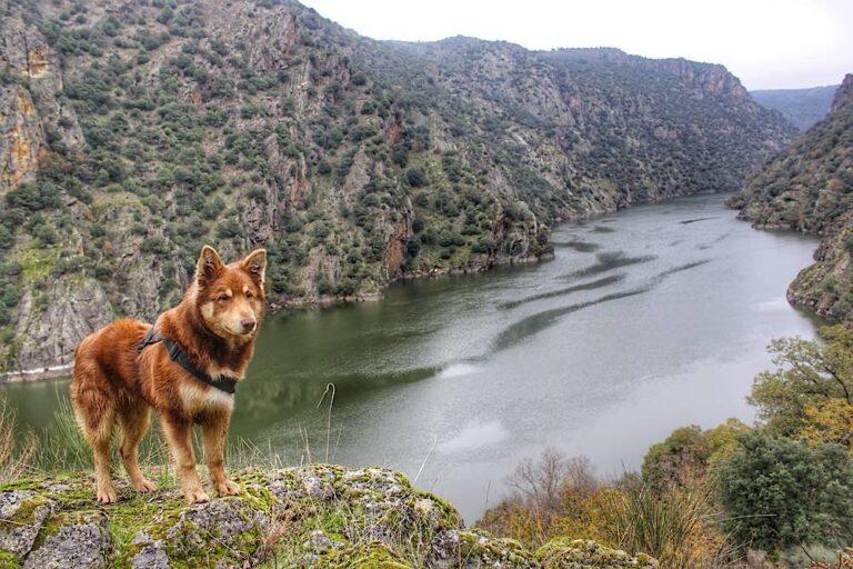 Mirador de Rupurupay y Cascada El Remolino (Las Arribes, Aldeadávila de la Ribera)