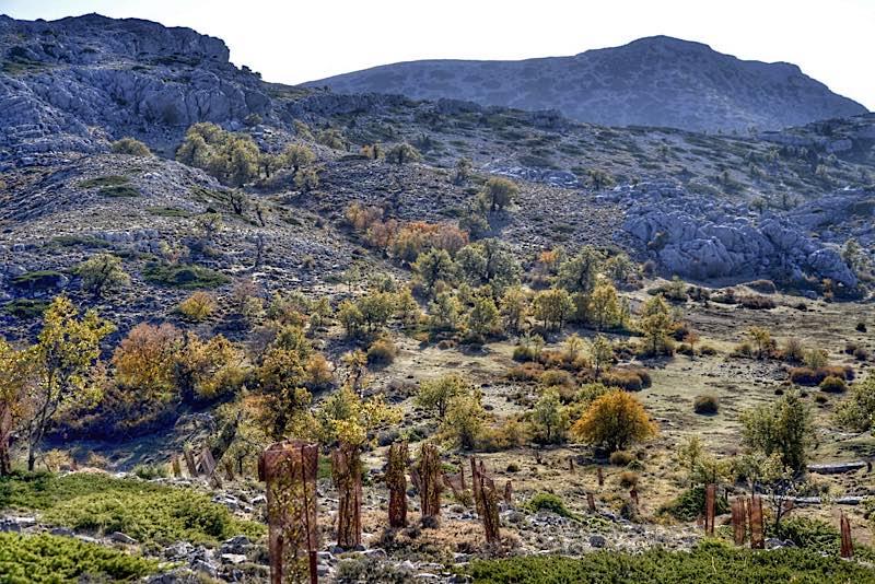 Hiking Sierra de Ronda