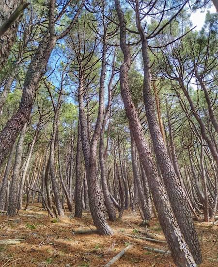 Hiking Salamanca