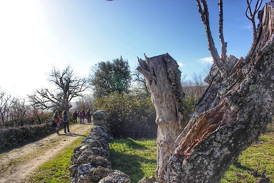 Rutas provincia Salamanca