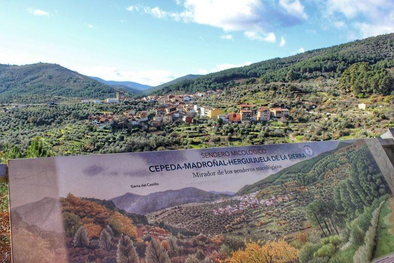 Sendero Micológico Circular Madroñal-Herguijuela-Cepeda