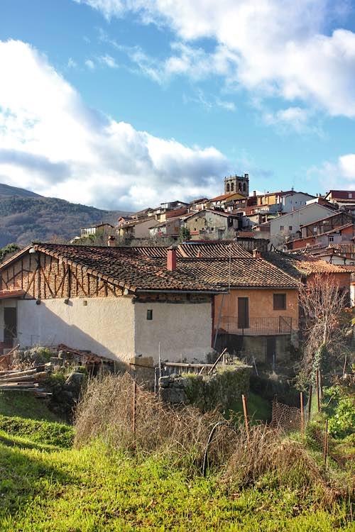Cepeda Sierra de Francia
