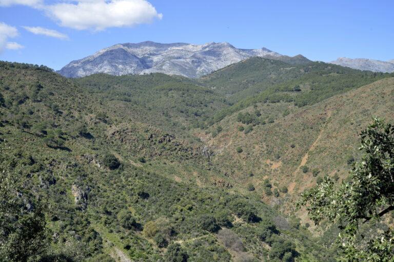 Cascadas de Tolox (Málaga)