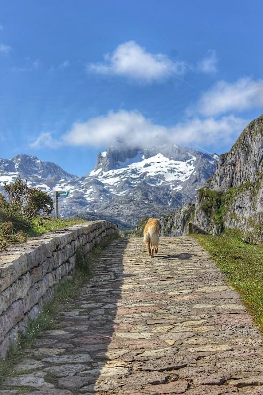 Hiking Lagos de Covadonga