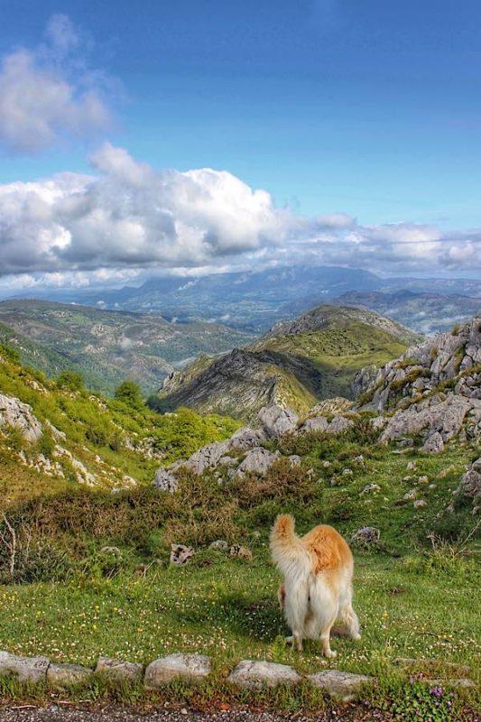 Trekking Lagos de Covadonga